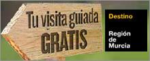 <!--:es-->banner-visitasGratuitas2013<!--:-->