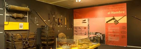 nuevo-museo