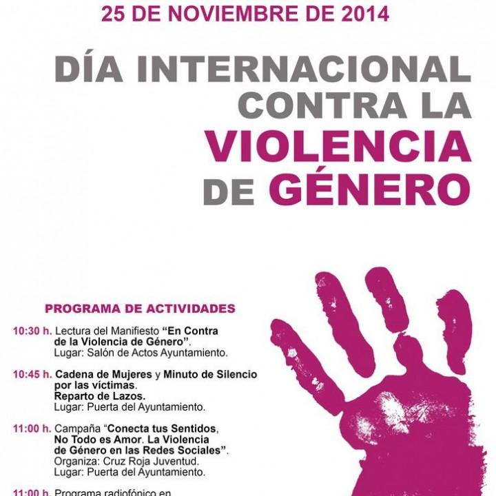 Cartel Violencia de género 2014.